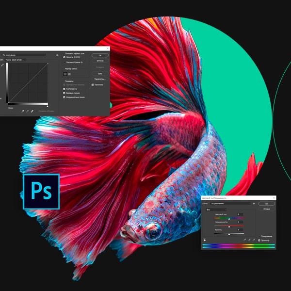 Онлайн Курс Дизайн и UX Adobe Photoshop: основы для веб-дизайнера Image