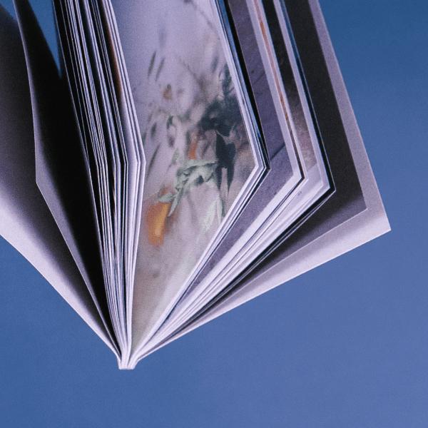 Онлайн Курс Аналитика Дата сторителлинг: о чем говорят цифры Image