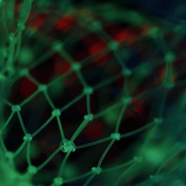 Онлайн Курс Аналитика Машинное обучение: фундаментальные инструменты и практики Image